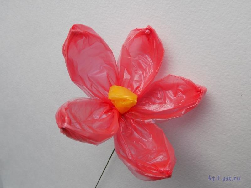 Цветы из целлофановых пакетов фото правильно